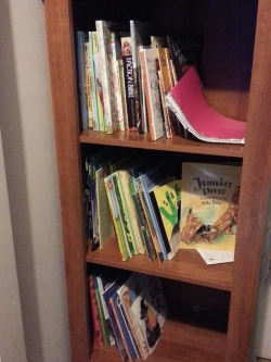 We encourage reading, all the time. These shelves usually look like a tornado just went thru.